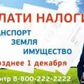iDC6696PO